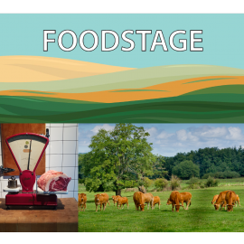 New Logo FOODSTAGE